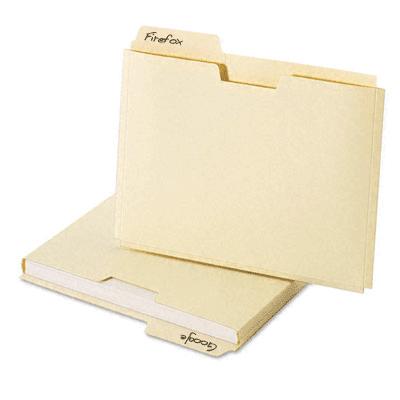 folder-analogy-manila